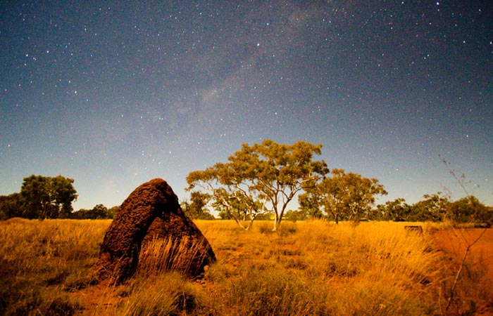 Photo of termite mound and night sky, Western Australia by Barry Epstein