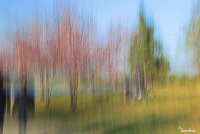 Photo Impressionism technique: image of couple and trees where camera shake and oversharpening created an impressionistic effect by Gerald Sanders.