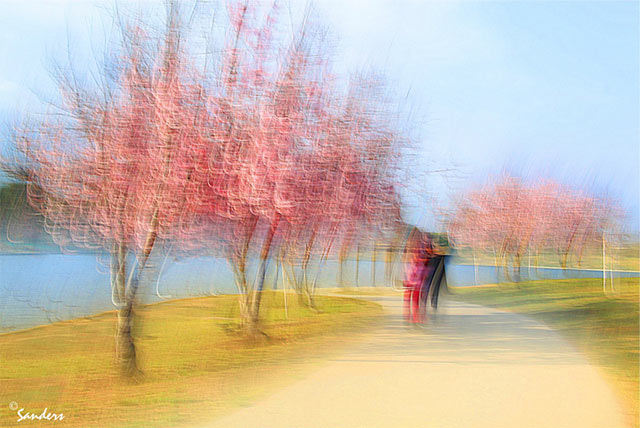 Photo Impressionism and camera shake technique: image of couples on a path lined with pink flowering trees near Lake Balboa by Gerald Sanders.
