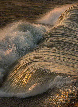 A higher shutter speed picks up the golden details of a wave at the Outer Banks in North Carolina by Margo Taussig Pinkerton.