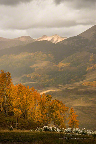 Fall landscape photo of the trees, hills and mountains of Colorado by Margo Taussig Pinkerton.