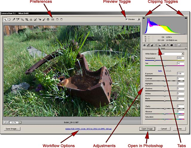 RAW Fundamentals: Screen shot of Camera RAW file in Photoshop Bridge program by John Watts. image in
