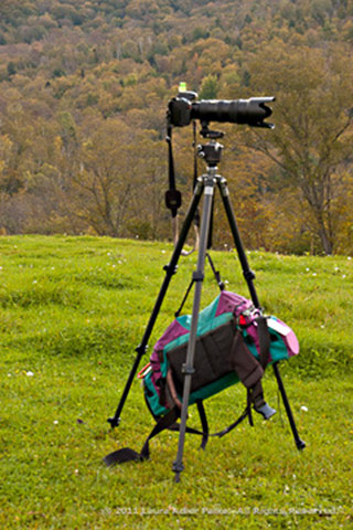 Image of camera on a tripod weighted down with a camera bag by Laura Adler Palka.