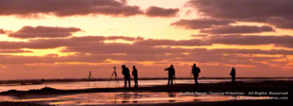 Silhouette photo of people and tripods on the beach at sunrise by Margo Taussig Pinkerton.