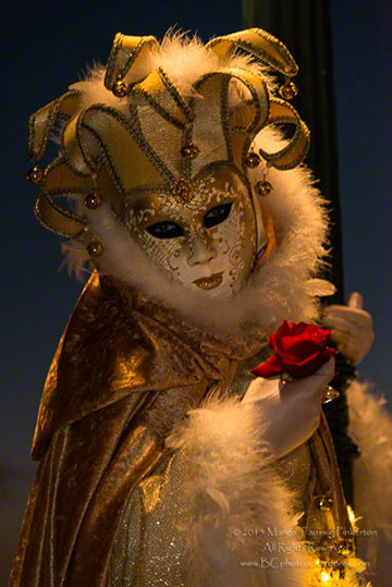 A person dressed in an elaborate gold and white costume for the Venetian Carnival in Venice, Italy by by Margo Taussig Pinkerton.