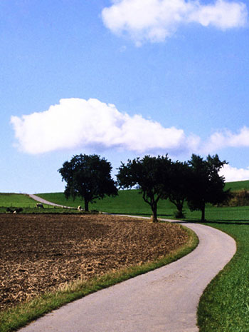 Photo of Farmland Path, Bavaria, Germany by Noella Ballenger