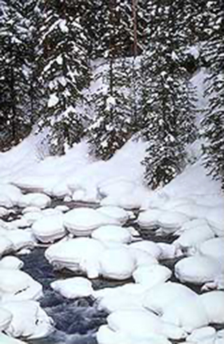 Image of a snowy scene at Soda Butte Creek in Wyoming by Brenda Tharp