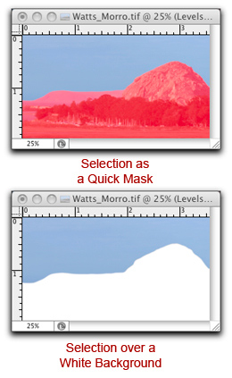 """Screen shot of Photoshop's Refine Edge tool """"preview option"""" examples by John Watts"""