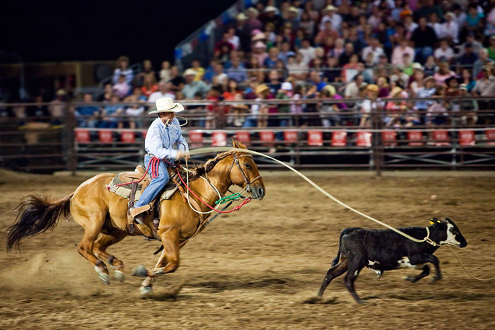 Stop action photography: Cowboy roping calf by Brad Sharp.