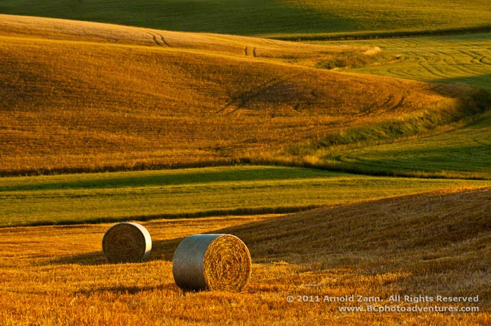 Photo of hay field and bales of hay in Tuscany, Italy by Arnold Zann.