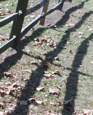 Photo of fence shadows by Jim Austin