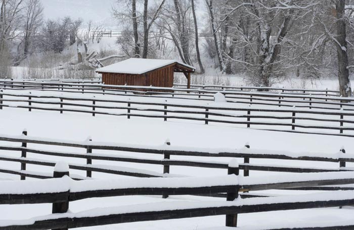 Photo of wood fence and corrals in snow by Andy Long