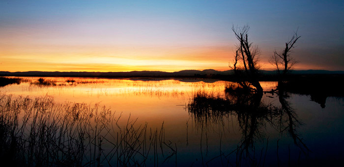 Sunset water reflection photo at the Sacremento Wildlife Preserve by Noella Ballenger