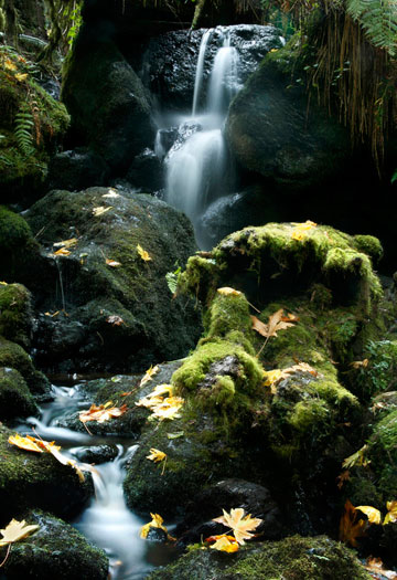 Photo of waterfall at Trillium Falls in Northern California by Noella Ballenger