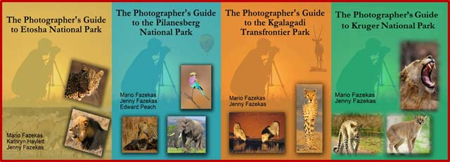 eBook Covers: The Photographer's Guides... photographing in Southern Africa.