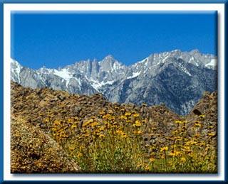 Image of Mt. Whitney, Sierra Nevada Range by John Watts.