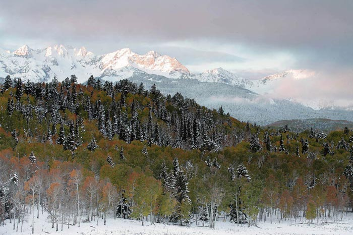 Photo of mountains, pine trees and Aspen trees in snow near Telluride, Colorado by Andy Long