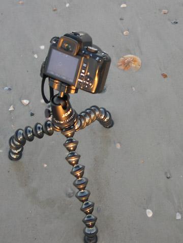 Image of Joby GorillaPod Focus and Ballhead X placed on beach at Jacksonville Beach by Marla Meier.