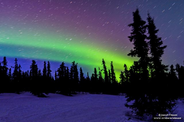 The rainbow colors of the Aurora Borealis in dark winter sky on Kodiak Island, Alaska by Joseph Classen