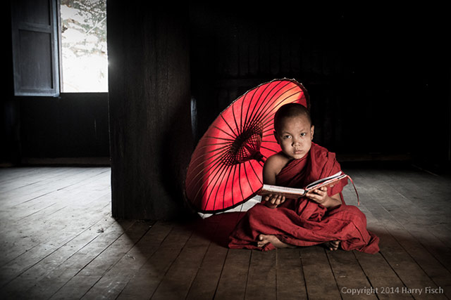 A young monk in red garments sits on a wood floor with a red umbrealla and book at Bagan, Myanmar by Harry Fisch.