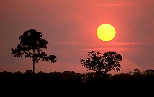 Red and orange sunset with silhouette of landscape by Willis T. Bird.