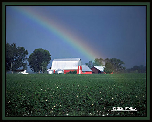 Image of red barn and field below a rainbow by Willis T. Bird.