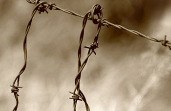 Photo of barbed wire by Noella Ballenger