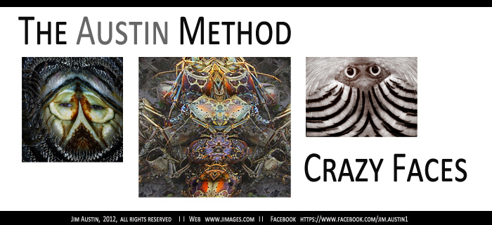Images for The Austin Method - Crazy Faces by Jim Austin