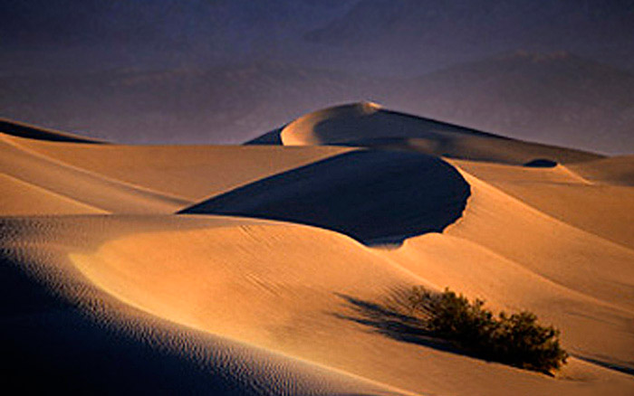 Photo of early morning light on the sand dunes of Death Valley by Noella Ballenger