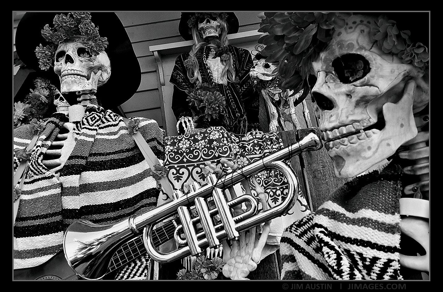 Dead But still in Tune Saint Augustine, Florida, Copyright Jim Austin Jimages.