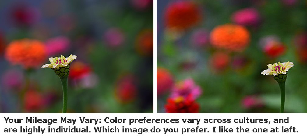 Subjective Color Flowers