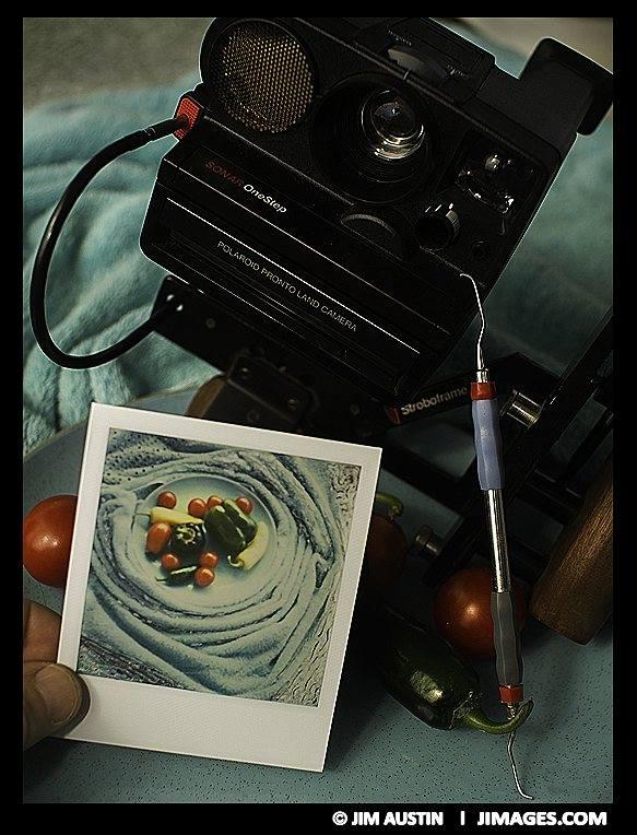 friends-polaroid-sx70-manipulation-september-harvest