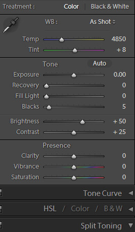 Screen capture of Lightroom 3 tools