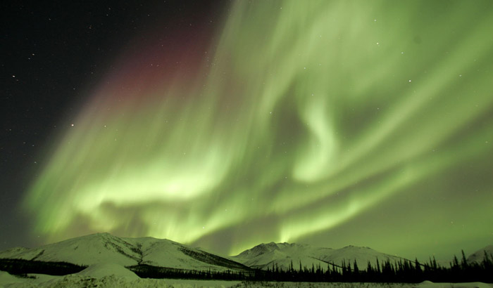 Photo of the Aurora Borealis in greens with snow covered mountains and trees in foreground Alaska by Andy Long.
