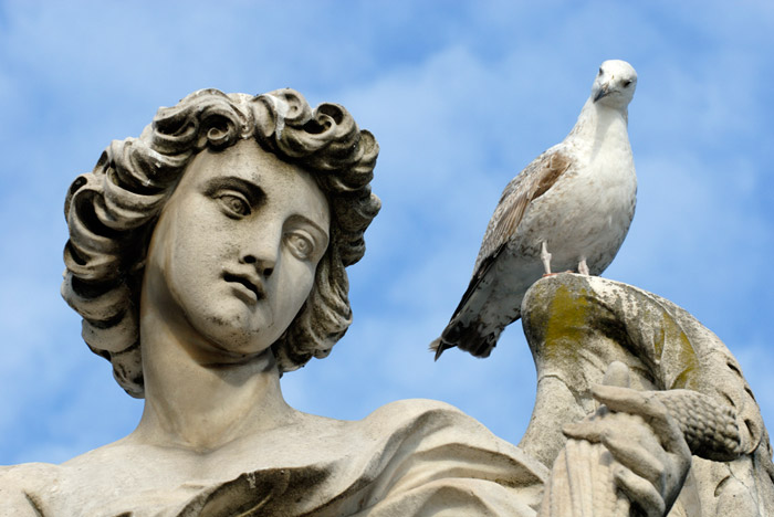 Photo of statue and pigeon by Piero Leonardi
