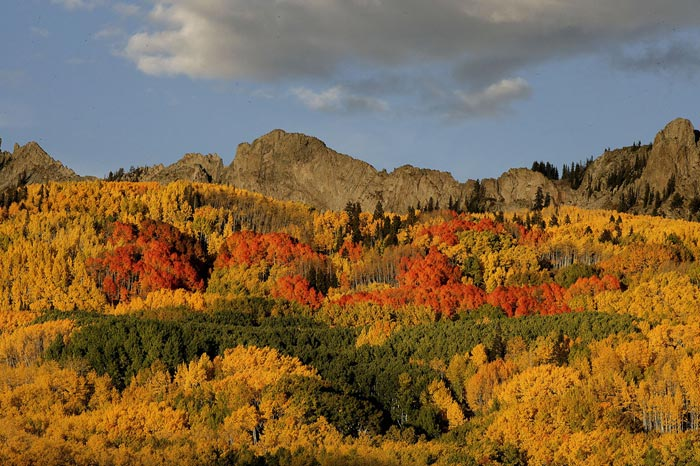 Photo of fall color at Maroon Bells, Aspen, Colorado by Andy Long