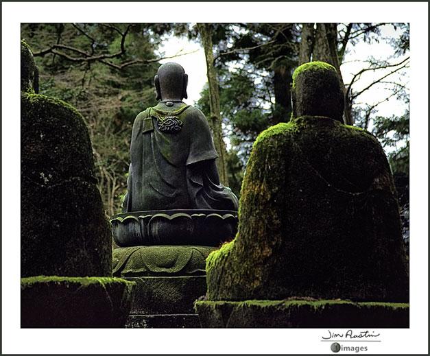 Photo of Buddha statues by Jim Austin