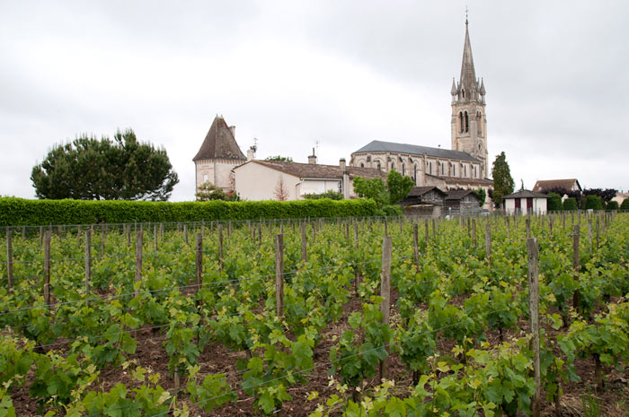 Photo of vineyards of Chateau Clinet along the church in the town of Pomerol, France by Cliff Kolber