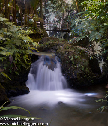 Photo of small waterfall in Hawaii by Michael Leggero