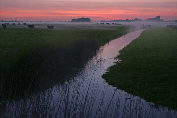 Photo of landscape and fog by Gert Wagner