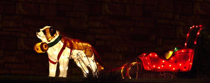 Photo of Christmas decorationsin yard by Noella Ballenger
