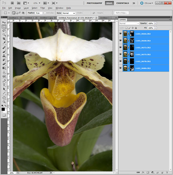 Screen shot of orchid & Layers for Focus Stacking in Photoshop CS5 by Brad Sharp