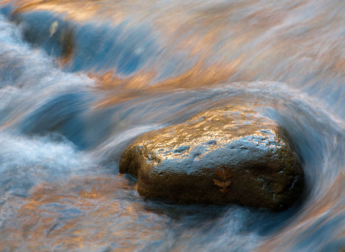Photo of rock in the Virgin River in Zion National Park by Allen Cagle