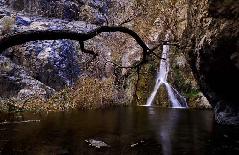 Photo of Darwin Falls at Death Valley National Park by Michael Leggero.