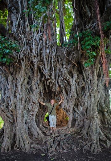 Photo of Nico DeBarmore in huge banyan tree in Bodhgaya, India by Indian man.