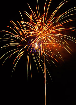 Orange, gold and green fireworks image by Marla Meier.
