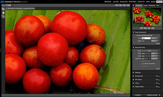 Perfect Photo Suite 8 Software: screen shot of Perfect Resize.