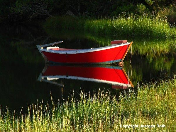 Reflection photo of a red Cape Cod dinghy floating on water near tall green grass by Juergen Roth.