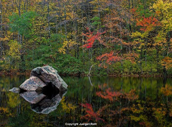 Reflection photo of fall leave in pond in New England by Juergen Roth.