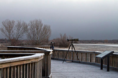 "Photo of ""Flight Deck"" at Bosque del Apache by Noella Ballenger"